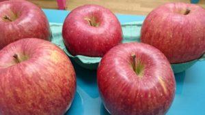 うさぎりんごとゲストのうさぎさん紹介☆5