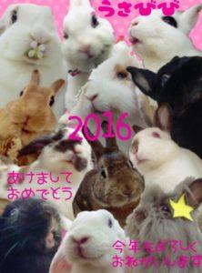 ☆2016年あけましておめでとうございます☆1
