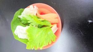野菜セット(おやつ)