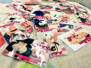 2016年版ハロウィン限定うさびびラミカ配布開始!2