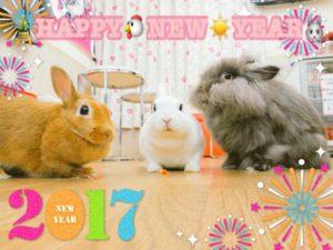 2017年あけましておめでとうございます。1
