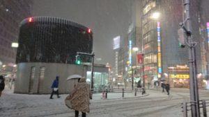 4年ぶりの大雪とうさぎ6