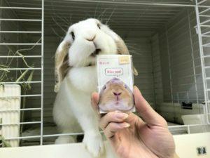 kiss me すだち♪4