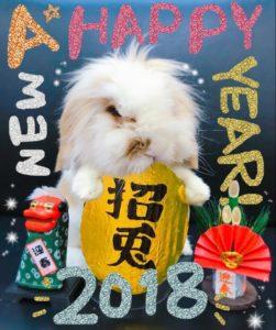 2018年、あけましておめでとうございます。5