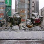 4年ぶりの大雪とうさぎ3