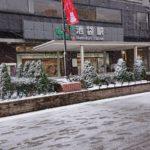 4年ぶりの大雪とうさぎ2