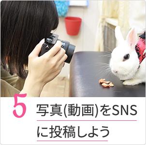 写真(動画)をSNSに投稿しよう