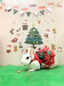 もうすぐクリスマス!2