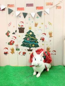 もうすぐクリスマス!3