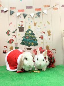 もうすぐクリスマス!6